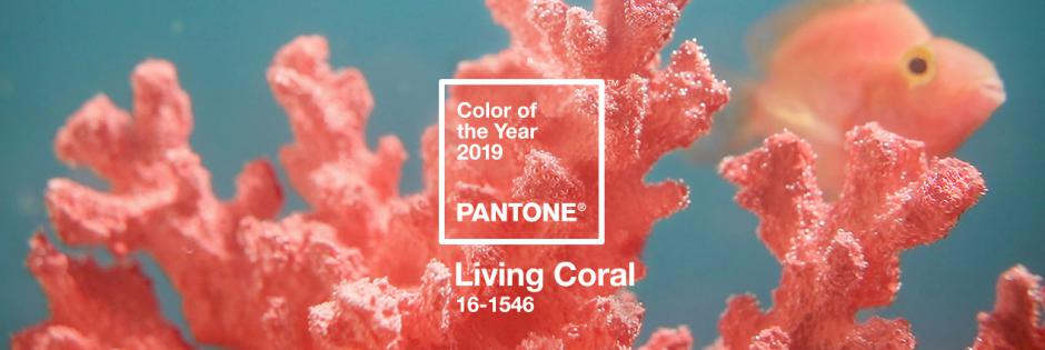 """Not ordinary """"LIVING CORAL"""" design"""